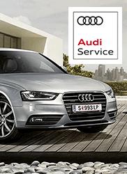 Hlaváček Audi